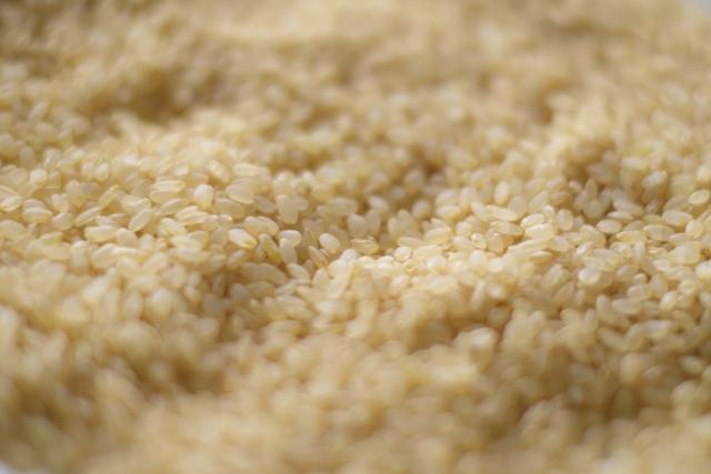 発芽玄米ダイエットってどうなの?その方法とは?